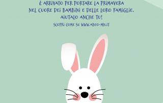 Prodotti solidali Abeo Pasqua online